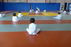 Baby judo 2015
